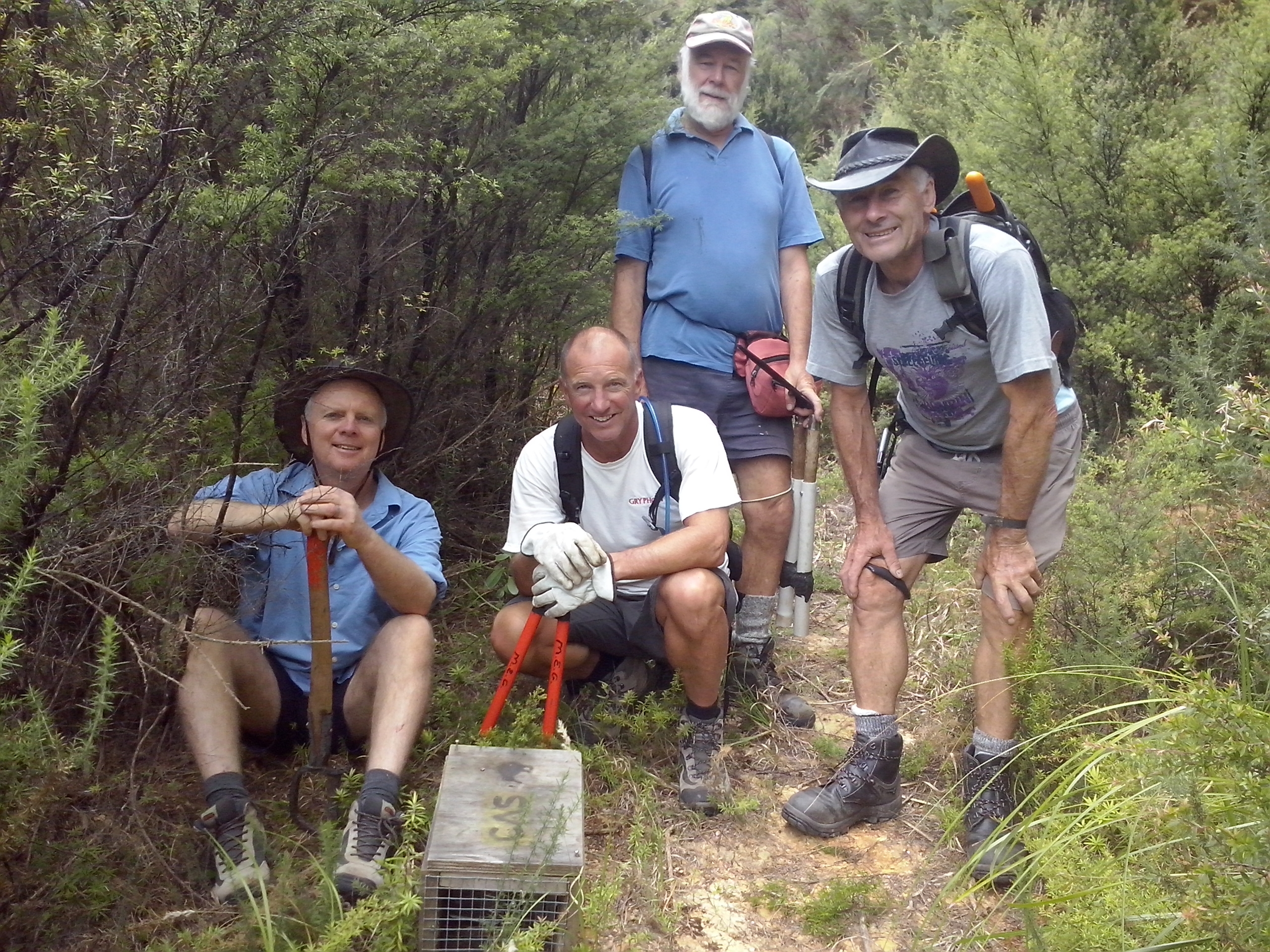 Volunteer track-cutters in the Coromandel Kiwi Project