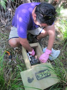 A Moehau Environment Group volunteer cleans a stoat trap