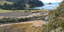 Waikawau Bay Wetland