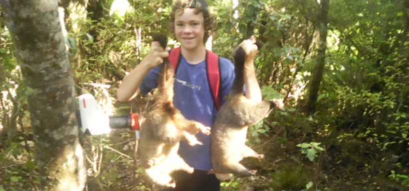 Mischa holds up two fresh possum carcasses beside a Goodnature trap